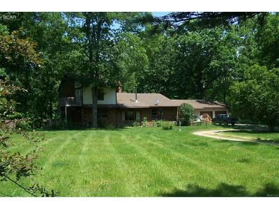 Shiawassee County Single Family Home For Sale: 11625 Champagne Lane