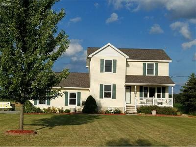 Genesee County Single Family Home For Sale: 10179 Duffield Road