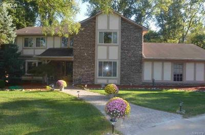 Rochester Hills Single Family Home For Sale: 707 Dutton Road