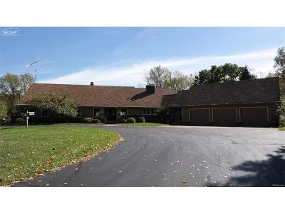 Oakland County Single Family Home For Sale: 8100 Buckhorn Lake Road