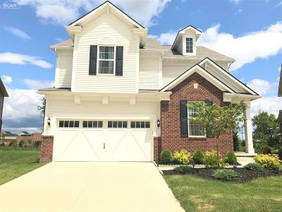 Novi Single Family Home For Sale: 27679 Hartwick Circle