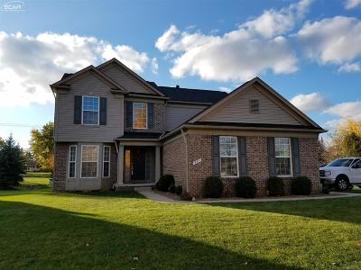 Holly Single Family Home For Sale: 997 River Rock Drive
