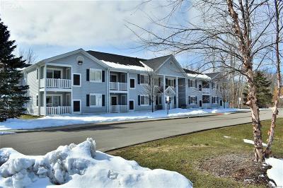 Northville, Novi, Canton, Plymouth, Livonia, Westland Condo/Townhouse For Sale: 1155 S Lake Drive #53