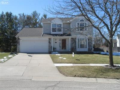 South Lyon Single Family Home For Sale: 967 Westbrook Drive