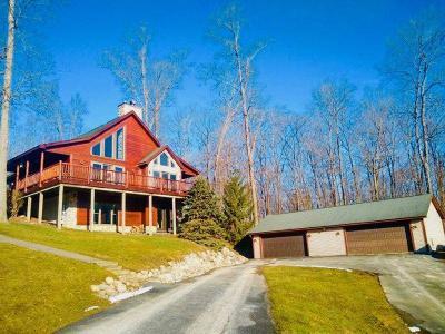 Brandon Twp Single Family Home For Sale: 213 Corey Ln
