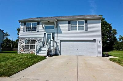 Single Family Home For Sale: 239 Andover Woods
