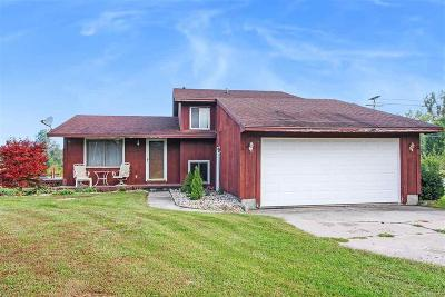Huron Twp Single Family Home For Sale: 30120 King