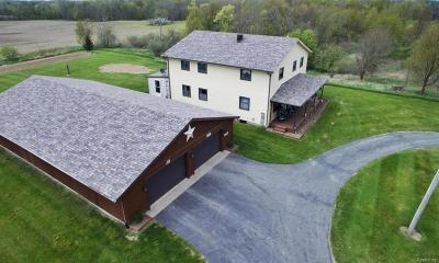 Hillsdale County Single Family Home For Sale: 8800 Blount Rd