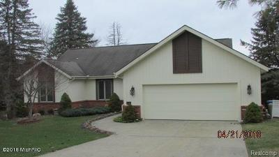 Hillsdale County Single Family Home For Sale: 4149 Kim Dr