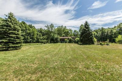 Calhoun County Single Family Home For Sale: 2375 22 Mile Rd