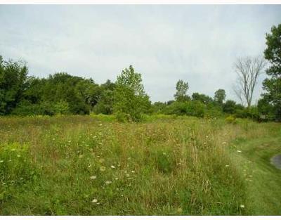 Ypsilanti Residential Lots & Land For Sale: 1822 W Michigan Avenue
