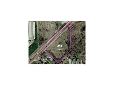 Pittsfield, Pittsfield Twp Residential Lots & Land For Sale: 5175 Michigan