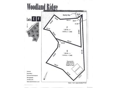 Ann Arbor Residential Lots & Land For Sale: 2861 Skyline Way