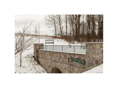 Ann Arbor, Scio, Ann Arbor-scio, Scio, Scio Township, Scio Twp Residential Lots & Land For Sale: 6817 Bridgewood Hills Drive