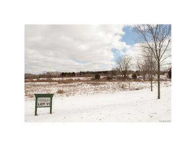 Ann Arbor, Scio, Ann Arbor-scio, Scio, Scio Township, Scio Twp Residential Lots & Land For Sale: 6886 Bridgewood Hills Drive