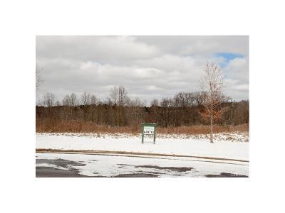 Ann Arbor, Scio, Ann Arbor-scio, Scio, Scio Township, Scio Twp Residential Lots & Land For Sale: 6894 Bridgewood Hills Drive