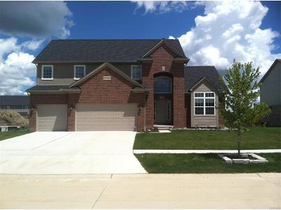 Flat Rock Single Family Home For Sale: 23753 Austen