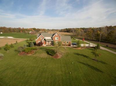 Washtenaw County Single Family Home For Sale: 12911 Case Road