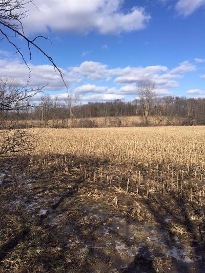 Ann Arbor, Scio, Ann Arbor-scio, Scio, Scio Township, Scio Twp Residential Lots & Land For Sale: N Parker Road Vcnt
