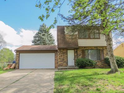 Superior, Superior Twp Single Family Home For Sale: 9208 Panama Avenue