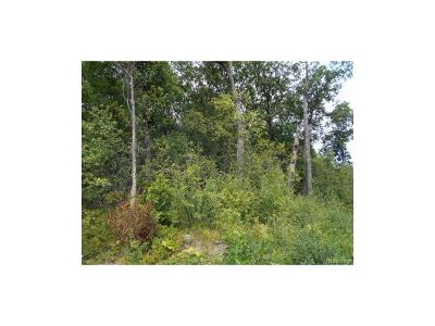 Ann Arbor Residential Lots & Land For Sale: 4031 Clark Road