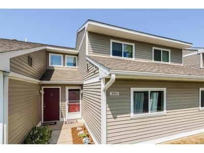 Ann Arbor, Ann Arbor (c), Ann Arbor Twp, Ann Arbpr Condo/Townhouse For Sale: 2103 Stone School Circle