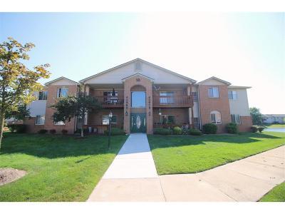 Belleville, Belleville-vanbure, Van Buren, Van Buren Twp Condo/Townhouse For Sale: 45979 Tallgrass Court #8
