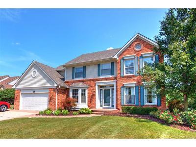 Farmington Single Family Home For Sale: 24386 Ridgeview