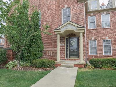 Canton, Canton Twp Condo/Townhouse For Sale: 258 N Village Way