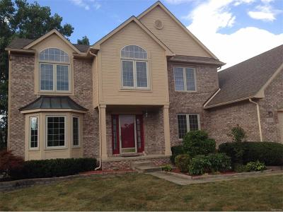 Pittsfield, Pittsfield Twp Rental For Rent: 3100 Tiger Lily Court