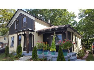 Ypsilanti Single Family Home For Sale: 115 Bell Street