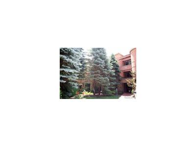 Ann Arbor Condo/Townhouse For Sale: 3000 Glazier Way #110