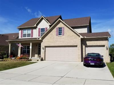 Brownstown Twp Single Family Home For Sale: 17442 Sunny Crest Drive