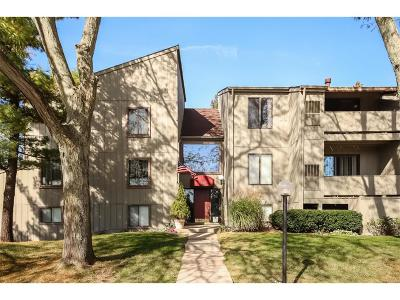 Superior Twp, Ypsilanti, Ypsilanti Twp Condo/Townhouse For Sale: 9601 Bayview Drive #202