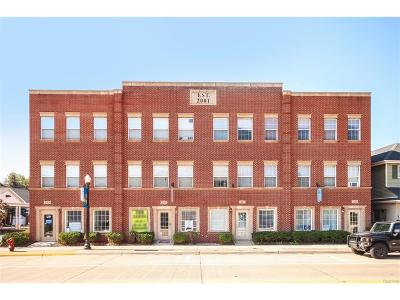 Belleville, Belleville-vanbure, Van Buren, Van Buren Twp Condo/Townhouse For Sale: 233 Main Street #5