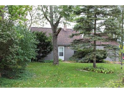 Ann Arbor Single Family Home For Sale: 1721 Newport Road