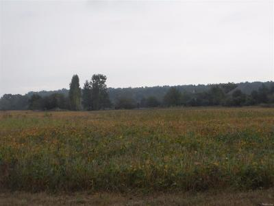 Pittsfield, Pittsfield Twp Residential Lots & Land For Sale: 6725 S Warner Road