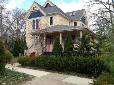 Ann Arbor Single Family Home For Sale: 742 Gott Street