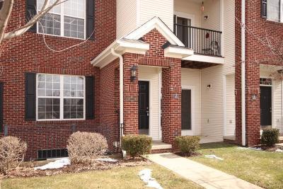 Ann Arbor, Scio, Ann Arbor-scio, Scio, Scio Township, Scio Twp Rental For Rent: 229 Scio Village Court #103