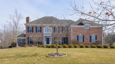 Ann Arbor Single Family Home For Sale: 1715 Newport Creek Drive