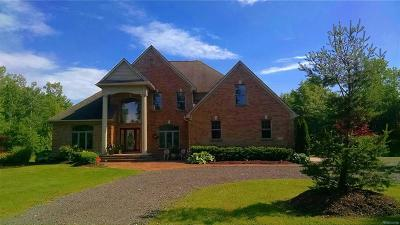 Macomb County, Oakland County, Wayne County Single Family Home For Sale: 47051 Executive Drive