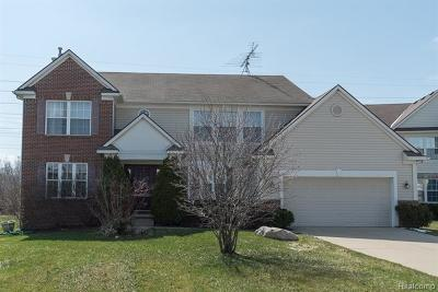 Ann Arbor Single Family Home For Sale: 2244 Indian Creek Drive
