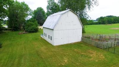 Lenawee County Single Family Home For Sale: 5004 Macon Road