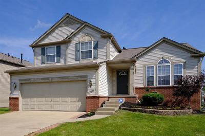 Superior, Superior Twp Rental For Rent: 9653 Wexford Drive