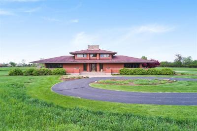 Washtenaw County Single Family Home For Sale: 2520 W Delhi Road