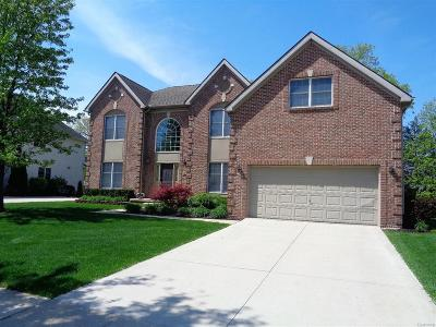 South Lyon MI Single Family Home For Sale: $410,000
