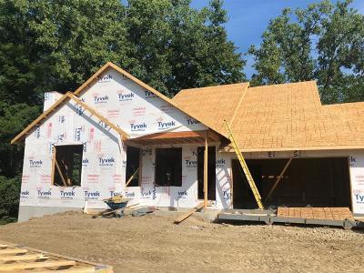 Ann Arbor Single Family Home For Sale: 2258 Foss