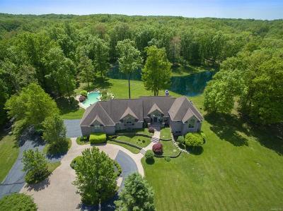 Washtenaw County Single Family Home For Sale: 18591 Grass Lake Road