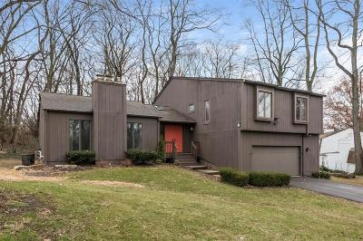 Ann Arbor Single Family Home For Sale: 1610 Kearney Road