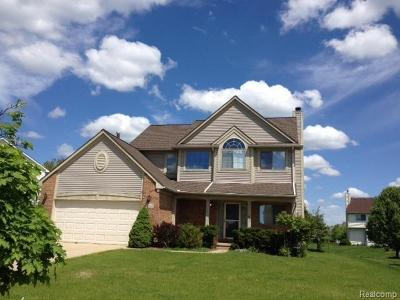 Pittsfield, Pittsfield Twp Rental For Rent: 2945 Mystic Drive